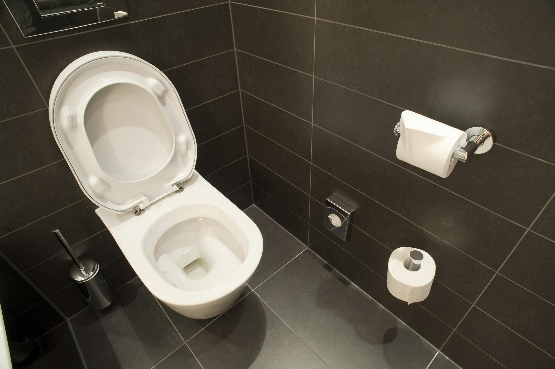 Просмотр онлайн в туалете 22 фотография